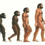 scala-uomini